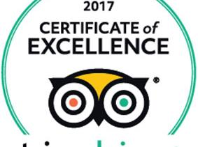 2017 Certificate of Excellence